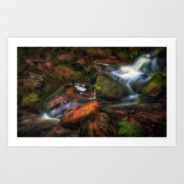 Colours of Autumn in a Brecon stream Art Print