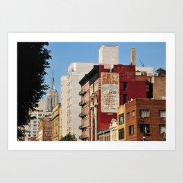 NYC Views Art Print