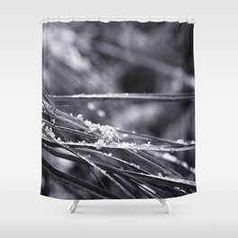 Grass in hoarfrost Shower Curtain