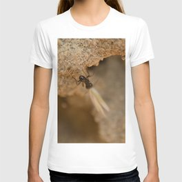Romantic Ant T-shirt