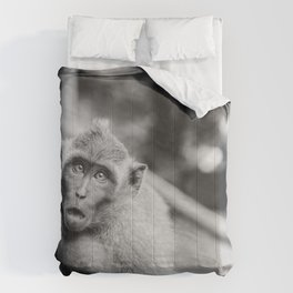 Cute Monkey (Black and White) Comforters