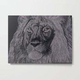 Scratch Board Lion Metal Print