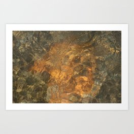 Natural Mosaic 5 Art Print