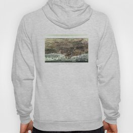 The city of Chicago-1892 Hoody