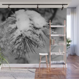 Touch of Winter - Black & White Wall Mural