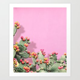 Prickly Pear plants on Pink Art Print