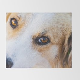 Portrait of a lovely stray dog Throw Blanket