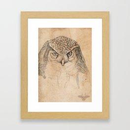 Hawk Owl Sketch Framed Art Print