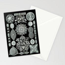 Ernst Haeckel - Scientific Illustration - Diatomea Stationery Cards