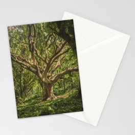 Old Green Tree Stationery Cards