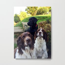 Jet, Stanley and Walter Metal Print