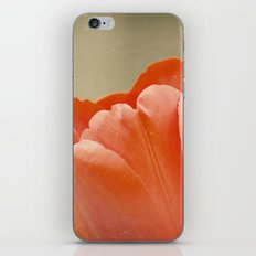 Orange Tulip iPhone & iPod Skin