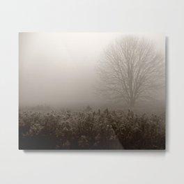 Falls first frost Metal Print
