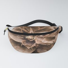 Close up of a pine cone Fanny Pack
