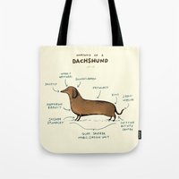 anatomy Tote Bags featuring Anatomy of a Dachshund by Sophie Corrigan