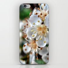 Flowers. iPhone & iPod Skin