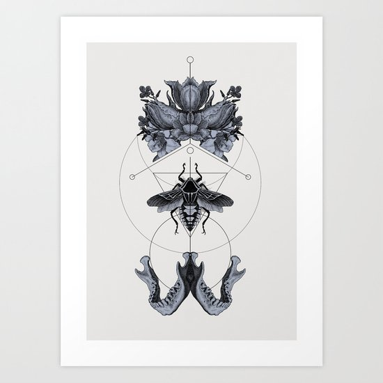 The Panoply Plate 01 Art Print