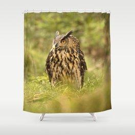 Eagle Owl Shower Curtain