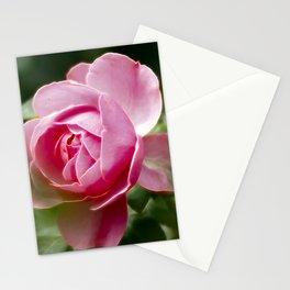 Rose20151054 Stationery Cards