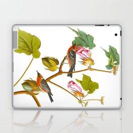 Bay-breasted Warbler Bird Laptop & iPad Skin