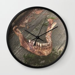Catacomb Culture - Mandible / Jaw Bone Wall Clock