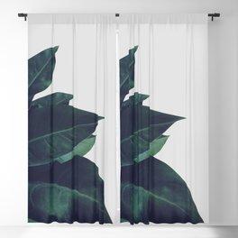 Enlighten Blackout Curtain