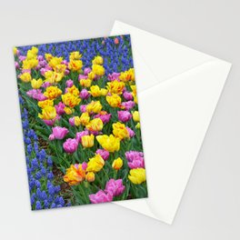 Muscari and tulips Stationery Cards