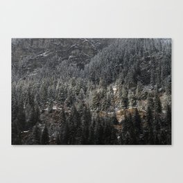 Powdered Mountain Canvas Print
