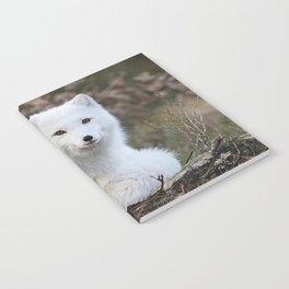 Polar Fox by Anne Elisabeth Notebook