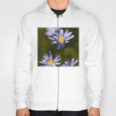 Purple daisies Hoody