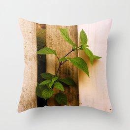 Break on Through Throw Pillow