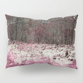 Paisaje y color. Pillow Sham