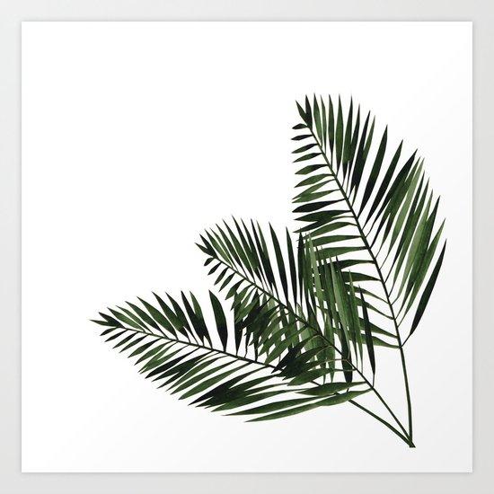 Tropical Exotic Palm Leaves I Art Print