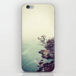 Niagara iPhone Skin