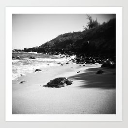 Hawaiian Sea Turtle on the Sand in Black and White Art Print