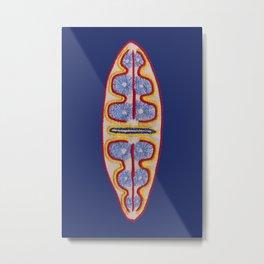 Diatom nr3 Metal Print