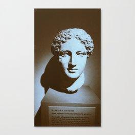 Head of a Goddess - photo Canvas Print