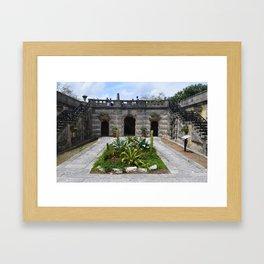 Cactus Patch at Vizcaya Framed Art Print