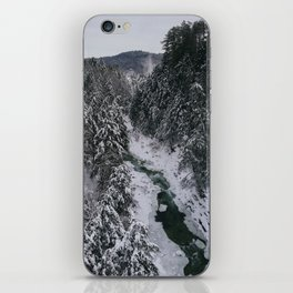 Winter in Vermont iPhone Skin