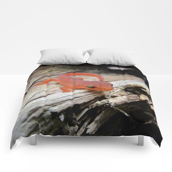 The Charismatic Newt Comforters