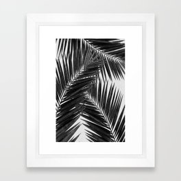 Palm Leaf Black & White III Framed Art Print