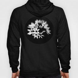 B&W Flower  Hoody