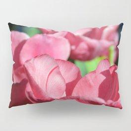 Pink Pyramid Pillow Sham
