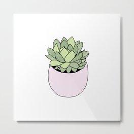 Suculent in flowerpot Metal Print
