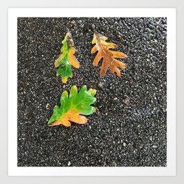 Rainy Leaves on Black Terrazzo background Art Print
