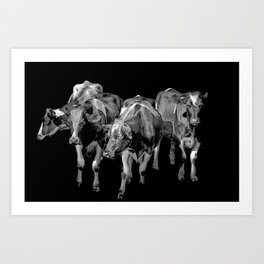 cows 6 Art Print