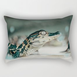 Pretty Eyes Rectangular Pillow