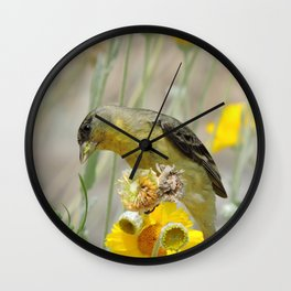 Feasting Finch Wall Clock
