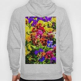 Viola Tricolor Pansy Flowers Hoody
