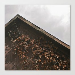 Camouflage - Red Leaves on Barn Canvas Print